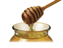 Včely - Vladimír ŠUBRT